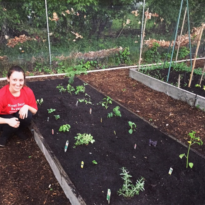 VEGGIES: Community Garden Update, Part V