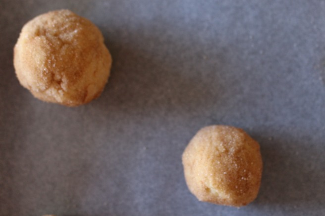 BAKE ME: Cinnamon Sugar Cookies